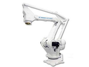 Palletizers (Robots)
